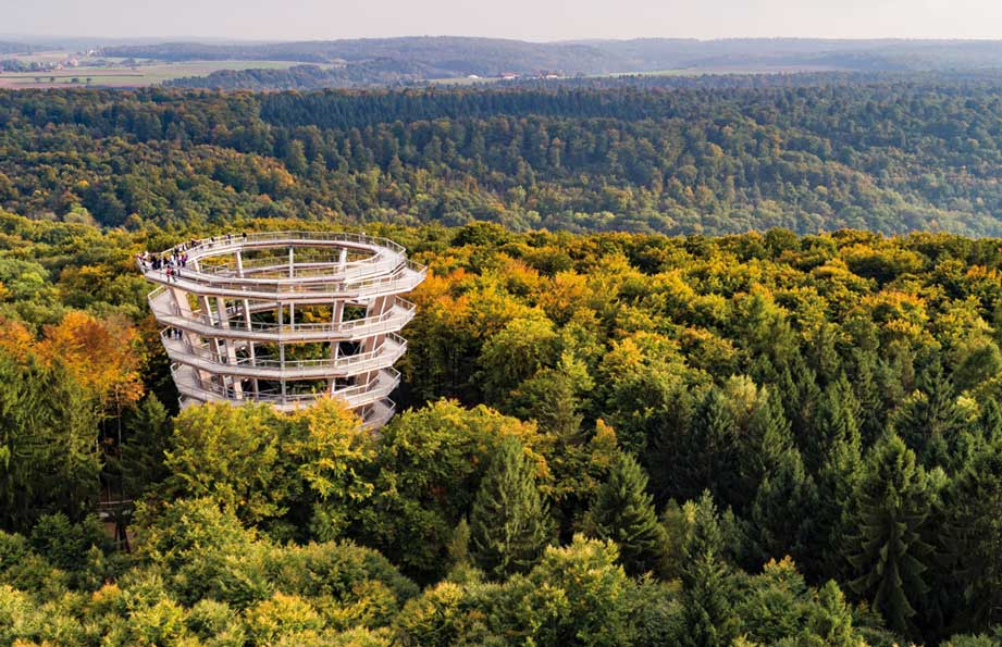 Der Baumwipfelpfad in der Nähe der Steigerwald Apartmens – Ferienwohnungen im Herzen Frankens.